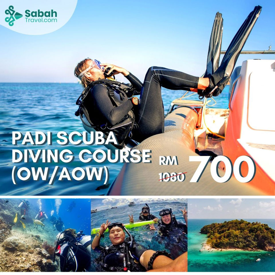 Padi Scuba Diving Course (ow/aow)