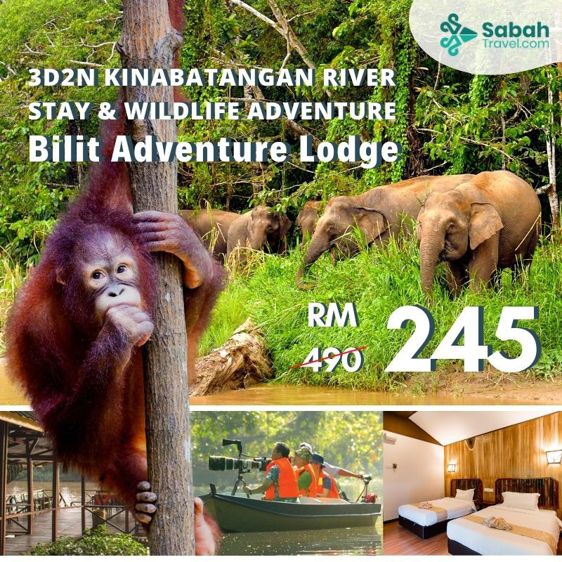 3d2n Kinabatangan River Stay & Wildlife Adventure