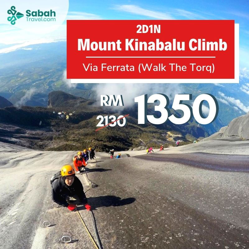 2d1n Mount Kinabalu Climb Via Ferrata (walk The Torq)