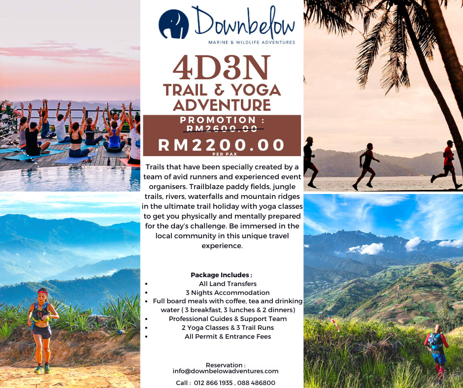 Downbelow 4d3n Trail & Yoga Adventure