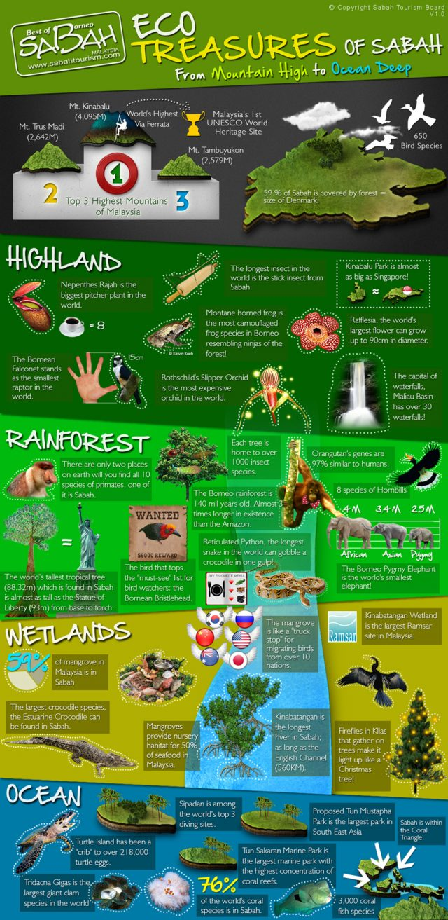 Eco treasures of Sabah