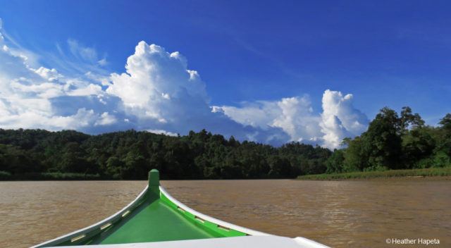 The Mighty Kinabatangan River