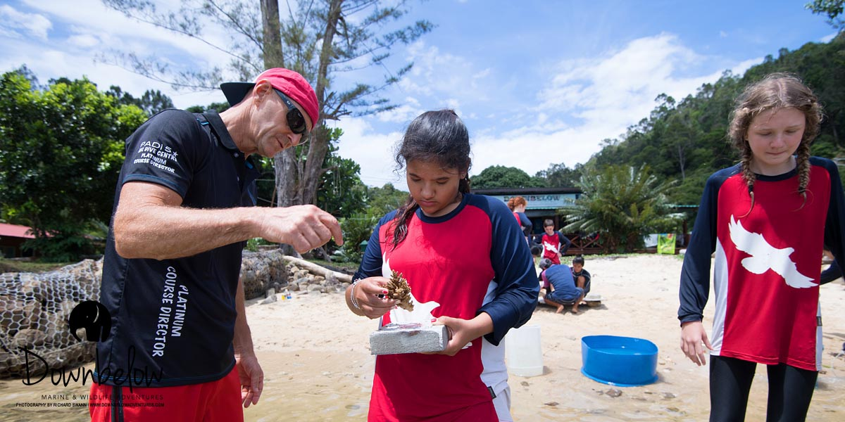 Coral education by Richard Swann. Photo courtesy of Downbelow Marine and Adventures