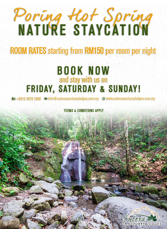 Poring Hot Spring Nature Staycation