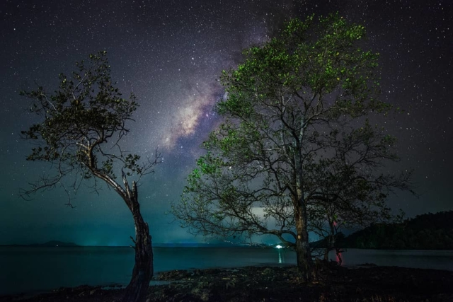 Starry-eyed: Photographers Capture Stunning Photos Of The Sabah Night Sky
