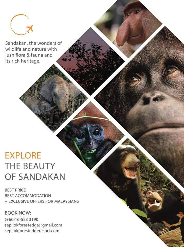 Sandakan Tour Packages and Sepilok Forest Edge Promo