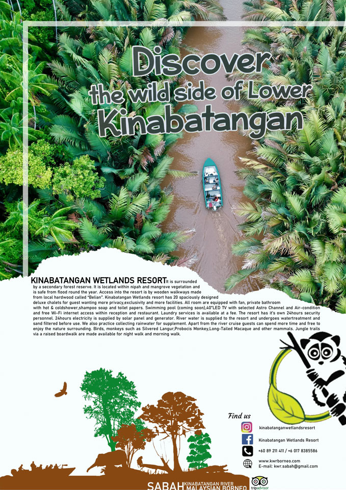 Discover the wild side of Lower Kinabatangan